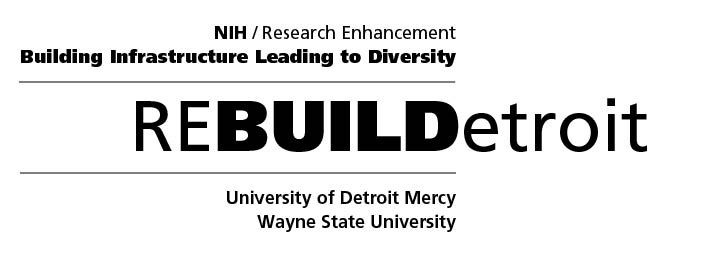 Summer Research Experience | ReBUILDetroit